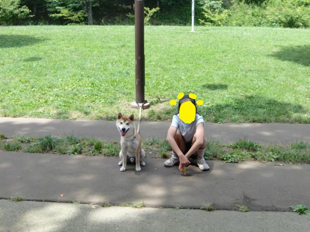 f:id:maki-mama:20090621141354j:image:w300