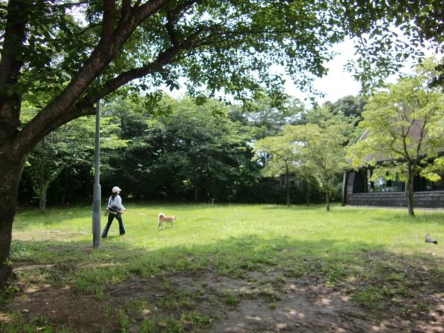 f:id:maki-mama:20090621144117j:image:w300