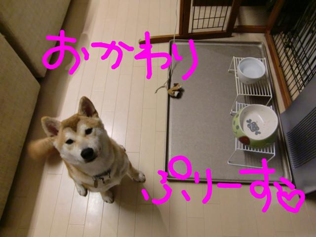 f:id:maki-mama:20090627211316j:image:w300