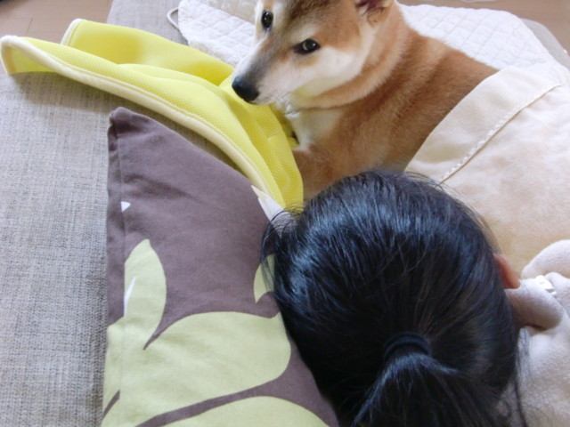 f:id:maki-mama:20090629101537j:image:w300