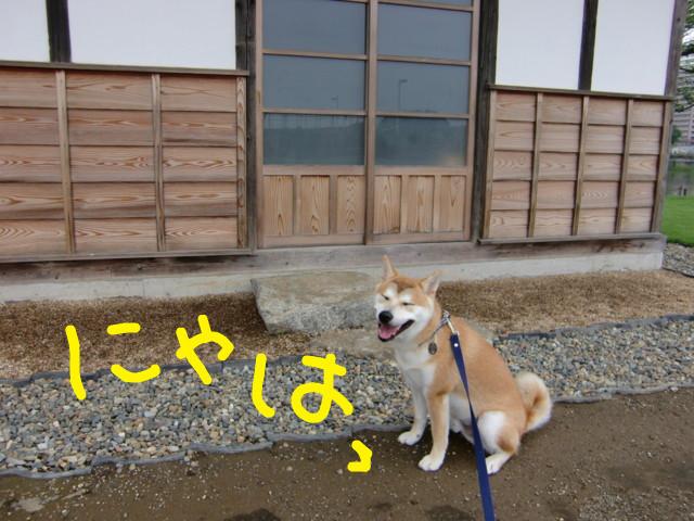 f:id:maki-mama:20090701185252j:image:w300