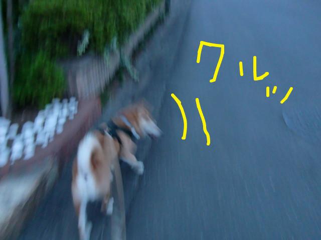 f:id:maki-mama:20090708061658j:image:w300