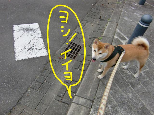 f:id:maki-mama:20090713090716j:image:w300