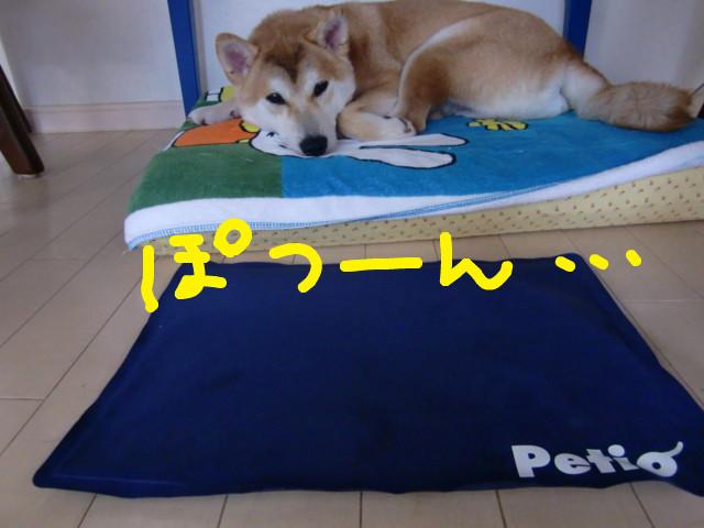 f:id:maki-mama:20090714200925j:image:w300