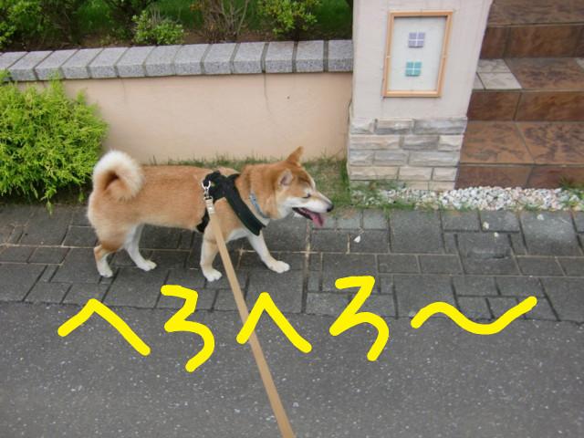 f:id:maki-mama:20090719093230j:image:w300