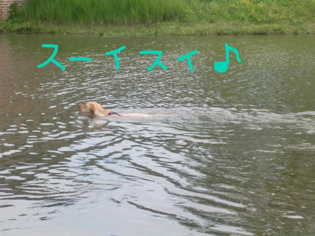f:id:maki-mama:20090720083608j:image:w300