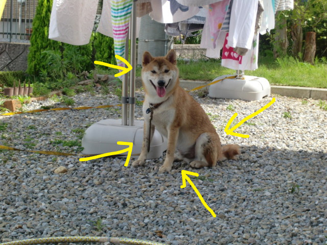 f:id:maki-mama:20090725170917j:image:w300