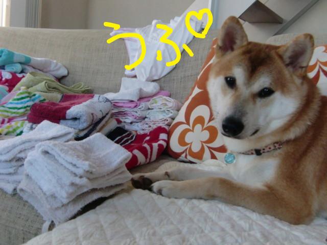 f:id:maki-mama:20090727081435j:image:w300