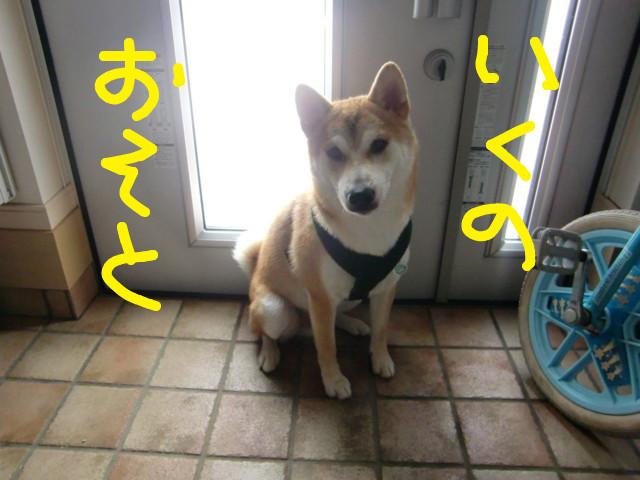 f:id:maki-mama:20090728084748j:image:w300