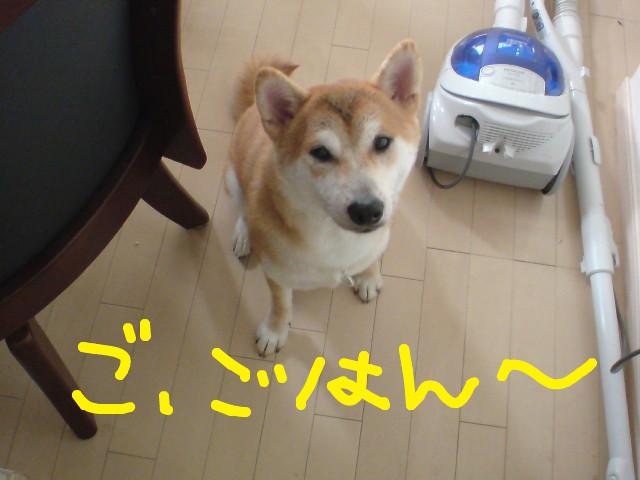 f:id:maki-mama:20090729075931j:image:w300