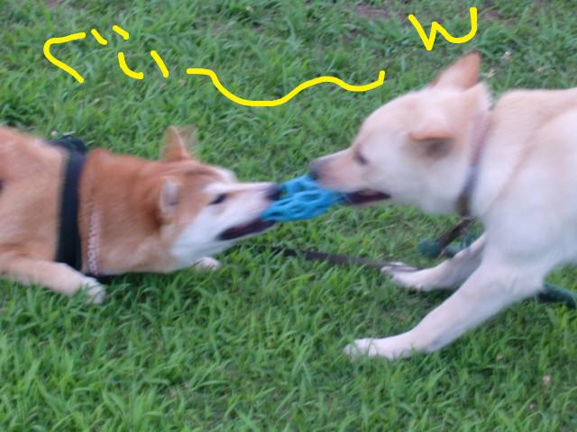 f:id:maki-mama:20090731120237j:image:w300