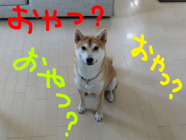 f:id:maki-mama:20090812210102j:image:w300