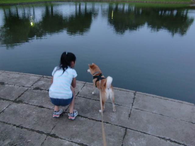 f:id:maki-mama:20090820172729j:image:w300