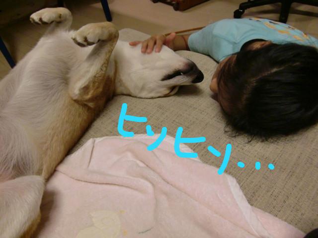 f:id:maki-mama:20090826223709j:image:w300