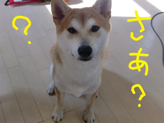 f:id:maki-mama:20090829091840j:image:w300