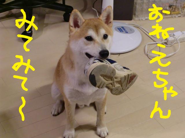 f:id:maki-mama:20090905124137j:image:w300