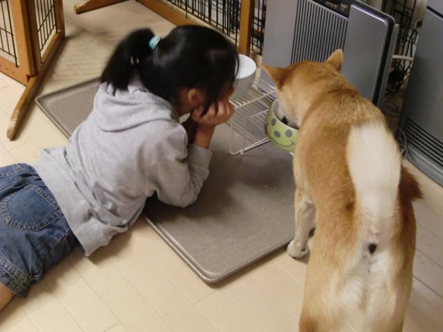 f:id:maki-mama:20090914204738j:image:w300