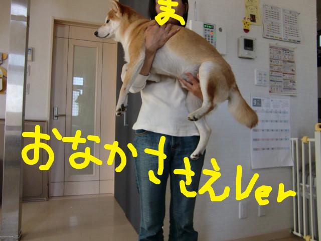 f:id:maki-mama:20090917131350j:image:w300