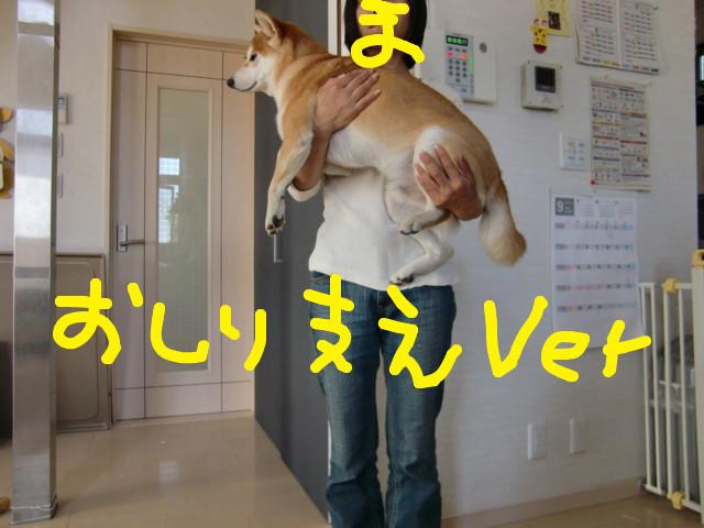 f:id:maki-mama:20090917131351j:image:w300