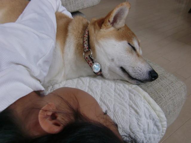 f:id:maki-mama:20090922150157j:image:w300