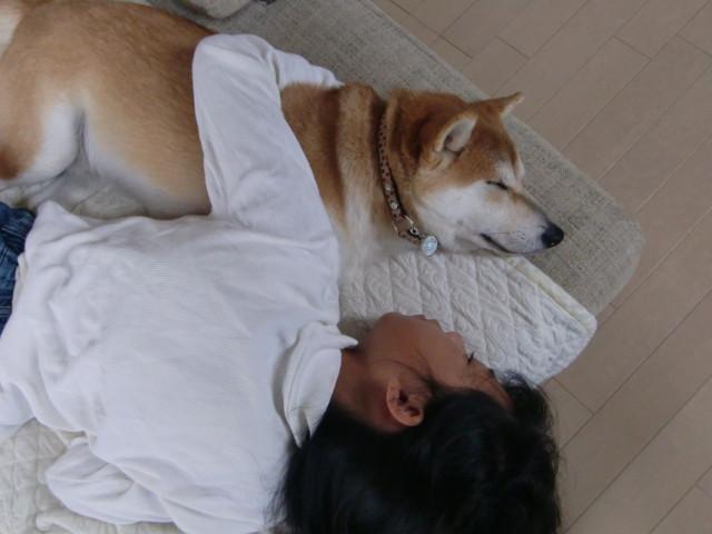 f:id:maki-mama:20090922150158j:image:w300