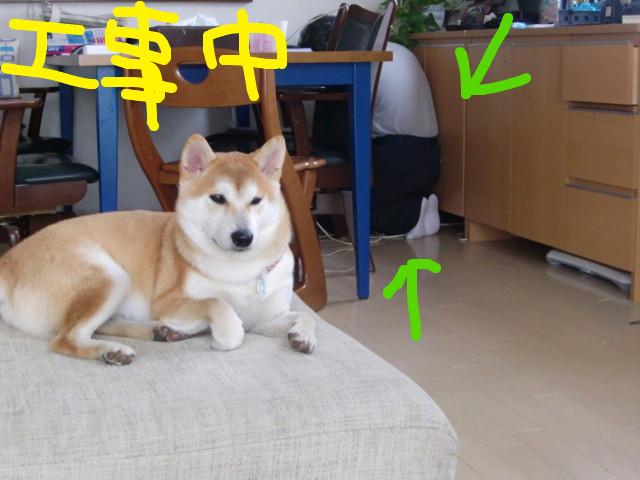 f:id:maki-mama:20091001120116j:image:w300