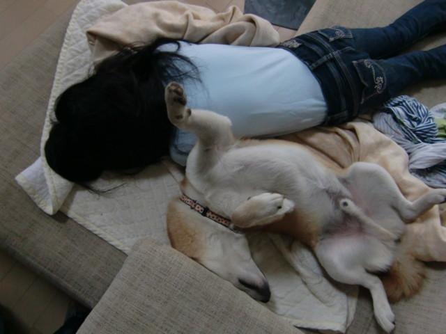 f:id:maki-mama:20091002114744j:image:w300