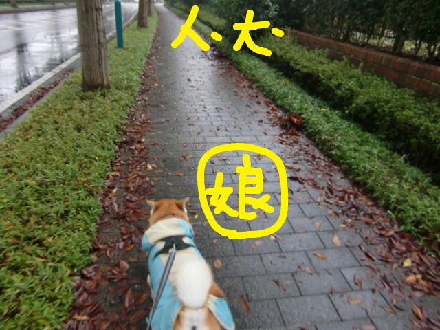 f:id:maki-mama:20091007100054j:image:w300