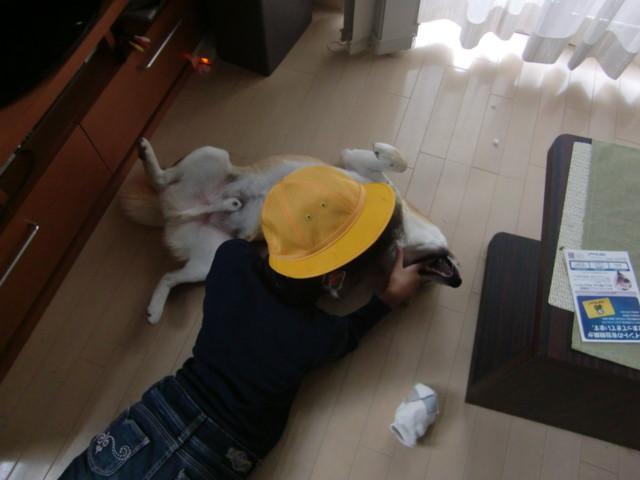 f:id:maki-mama:20091007100101j:image:w300