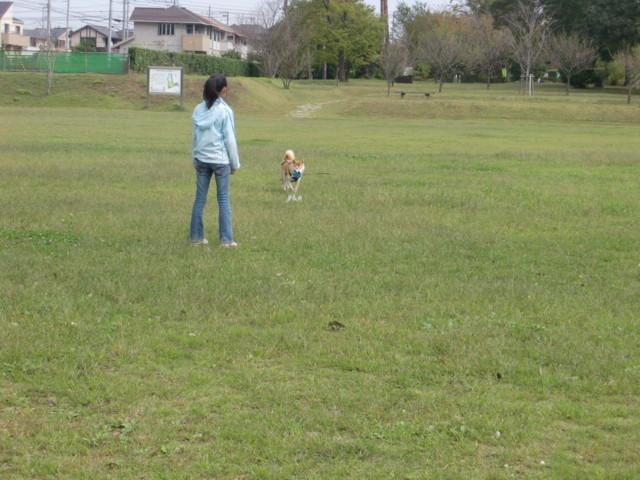 f:id:maki-mama:20091011130315j:image:w300