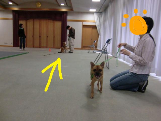 f:id:maki-mama:20091025173030j:image:w400