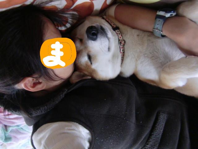 f:id:maki-mama:20091026145549j:image:w300