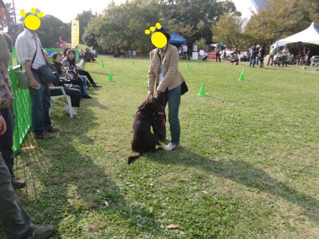 f:id:maki-mama:20091101181349j:image:w300