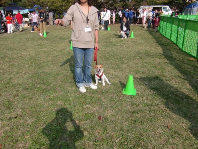 f:id:maki-mama:20091101181351j:image:w300