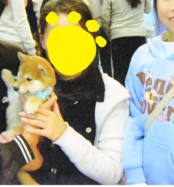 f:id:maki-mama:20091103181910j:image:w200