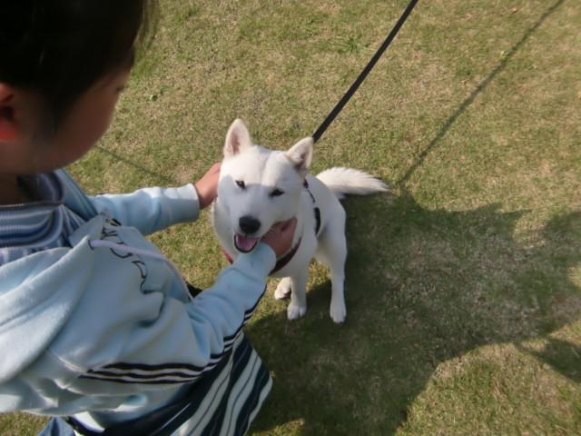 f:id:maki-mama:20091107165006j:image:w300