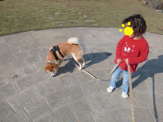 f:id:maki-mama:20091109162158j:image:w300