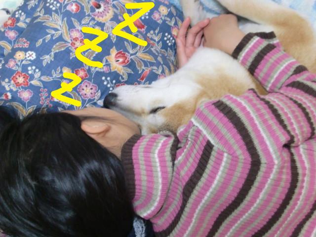 f:id:maki-mama:20091122211846j:image:w300