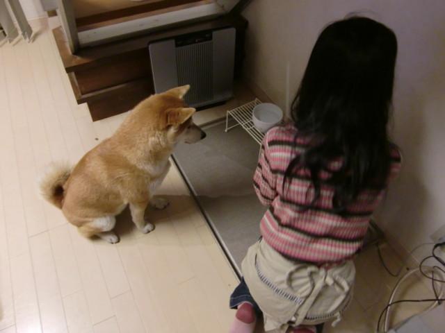 f:id:maki-mama:20091122211848j:image:w300