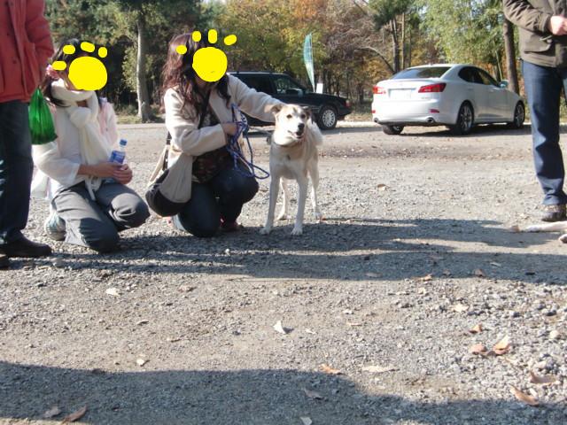 f:id:maki-mama:20091129134159j:image:w300