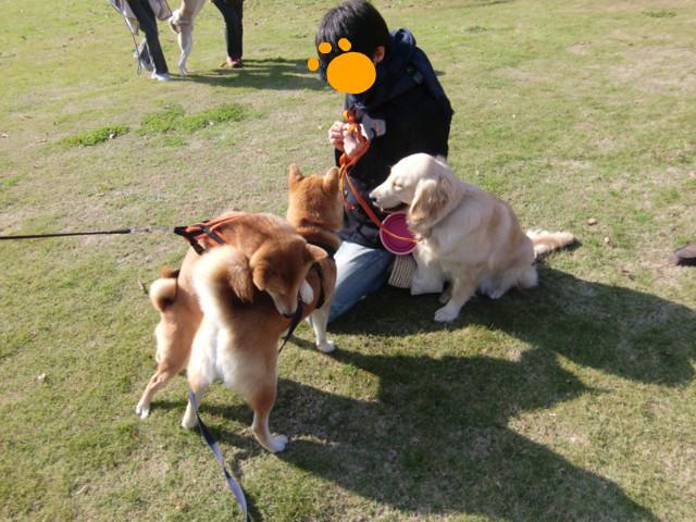 f:id:maki-mama:20091129134210j:image:w300