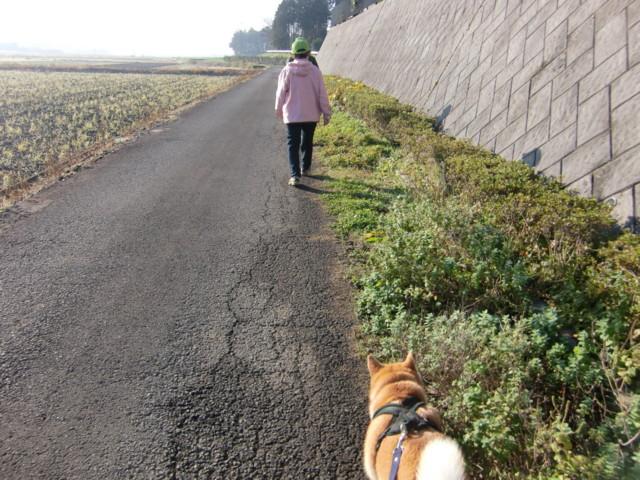 f:id:maki-mama:20091201211620j:image:w300