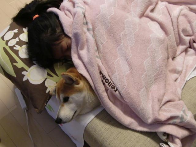 f:id:maki-mama:20091204080428j:image:w300