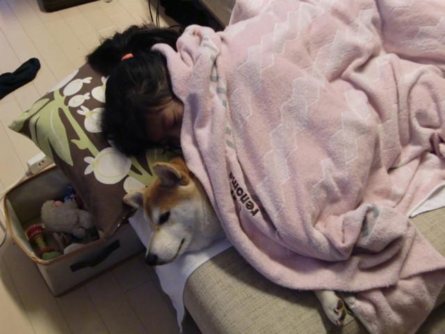 f:id:maki-mama:20091204080429j:image:w300