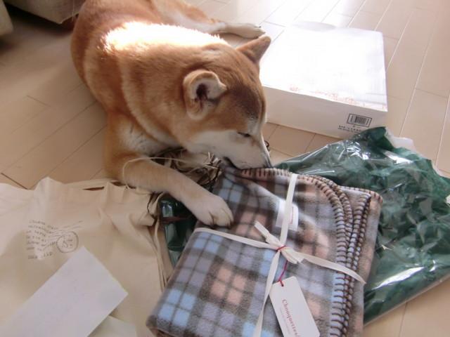 f:id:maki-mama:20091208133559j:image:w300