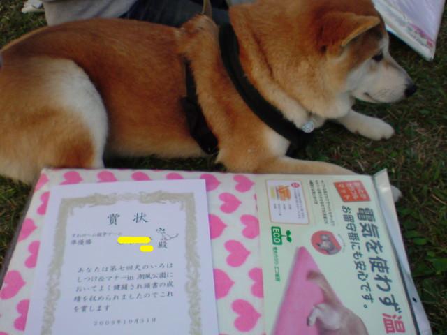 f:id:maki-mama:20091210115601j:image:w300
