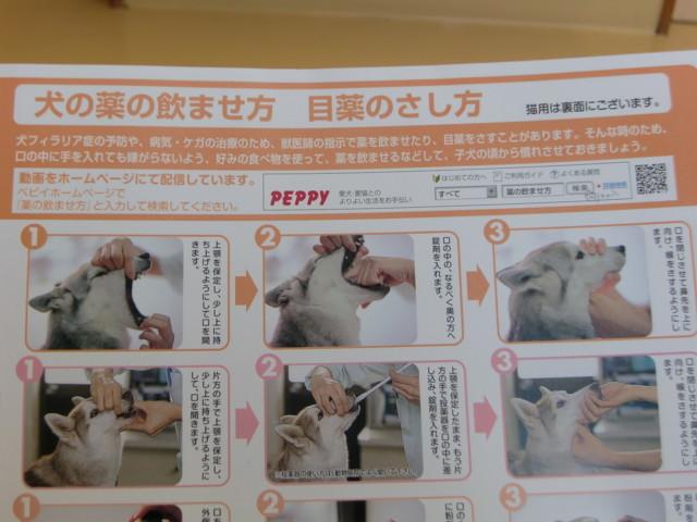 f:id:maki-mama:20091223132736j:image:w300