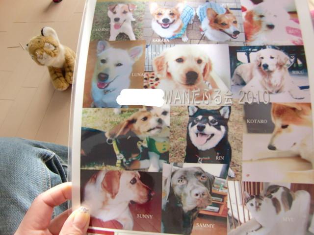 f:id:maki-mama:20100110111920j:image:w300