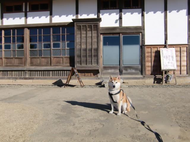 f:id:maki-mama:20100126130300j:image:w300