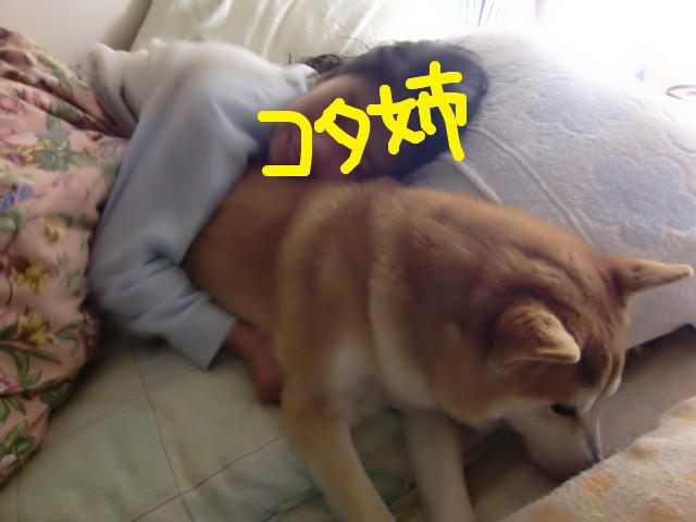 f:id:maki-mama:20100202135757j:image:w300